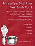 Just Diabetic Meal Plans, Basic Meals, Vol 1, Wayne Goodwin, 1483970760