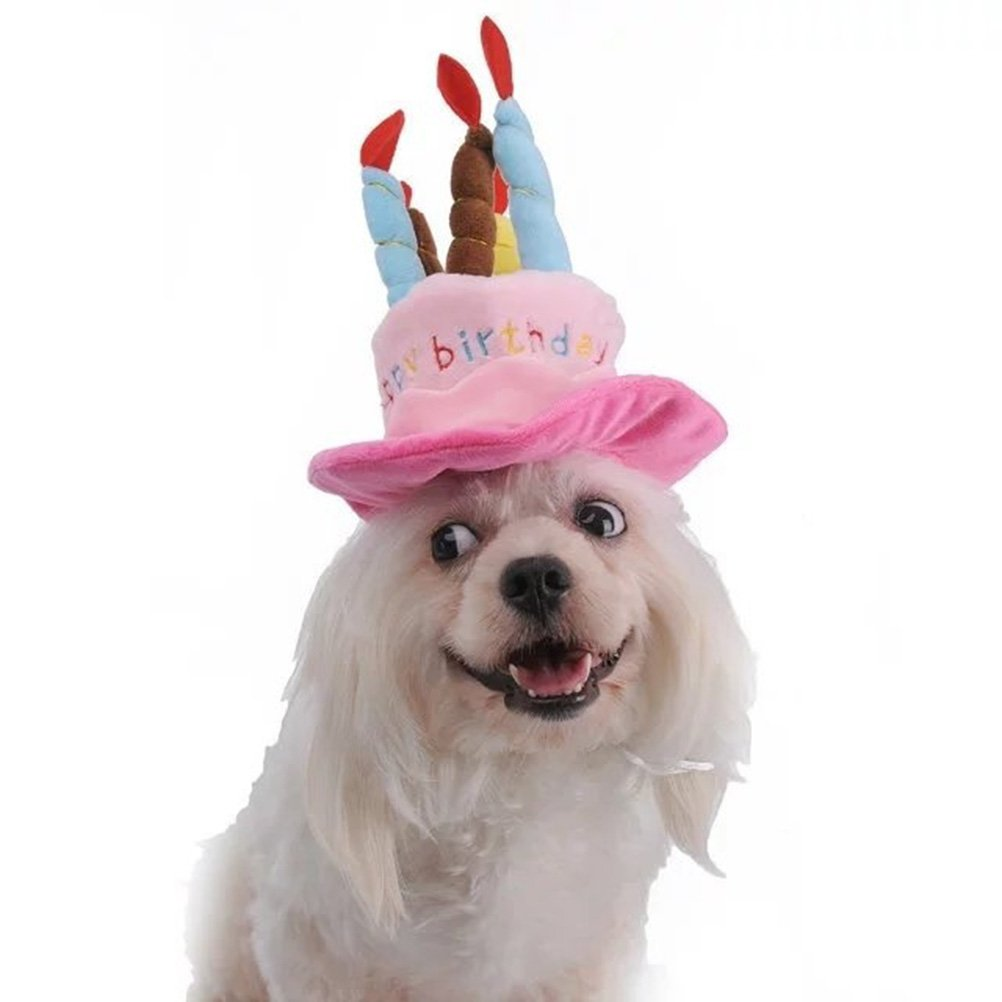 Easyinsmile Cute Adorable Dog Cat Birthday Cake Hat Pet Cap With 5 Color Candles Design