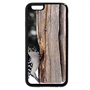 iPhone 6S Plus Case, iPhone 6 Plus Case, Get Off DN And Fill My Feeder!!