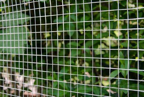607eac9220936 Grillage pour plantes et animaux Grillages pour enceintes et clôtures Idéal  pour le jardin volières poulaillers clapiers etc Longueur de rouleau  25 m  ...