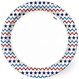 "Dixie Everyday Paper Plates, 8 1/2"", 48 count, Patriotic Seasonal Design, Lunch or Light Dinner Size Disposable Plate"