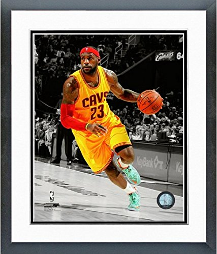 LeBron James Cleveland Cavaliers 2014 NBA Spotlight Action Photo (Size: 12.5