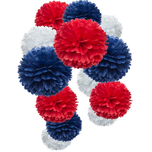 Paper Flower Tissue Pom Poms Party Supplies (red,Royal Blue,White,12pc) ()