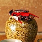 Tokyo Matcha Selection - Chatsubo : Shitoro-Yaki (M) : Old Japanese Tea Caddies with Box & Cloth,String from Shizuoka Japan [Standard ship by EMS with Tracking & Insurance]