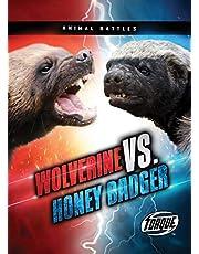 Wolverine vs. Honey Badger (Animal Battles)