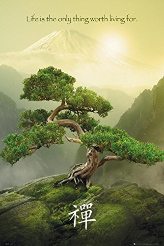 GB Eye Zen Mountain Poster
