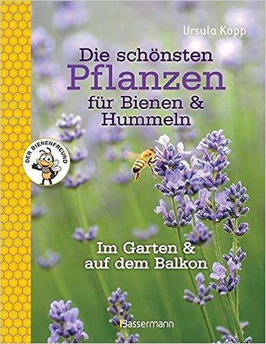 Die Schonsten Pflanzen Fur Bienen Und Hummeln Im Garten Auf Balkon