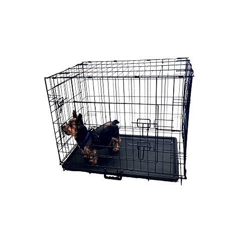 Kennelmaster Folding Kennel Crate with Divider, 24″ L x 17″ W x 19″ H