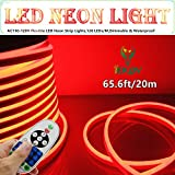 LED NEON LIGHT, IEKOV™ AC 110-120V Flexible LED Neon Strip Lights, 120 LEDs/M, Dimmable, Waterproof 2835 SMD LED Rope Light + Remote Controller for Home Decoration (65.6ft/20m, Red)