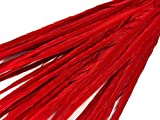 Pheasant Feathers, 50 Pieces Red 20-22'' Ringneck Pheasant Tail Wholesale Feathers