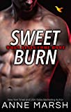 Sweet Burn (When SEALs Come Home Book 3)