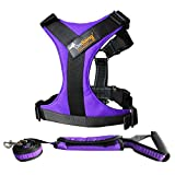 Pet Harnesses Reflective Strips Nylon Solid Color Neoprene Padded Anti/No-pull Adjustable Dog Training Harness , 2 Pieces Purple,Medium