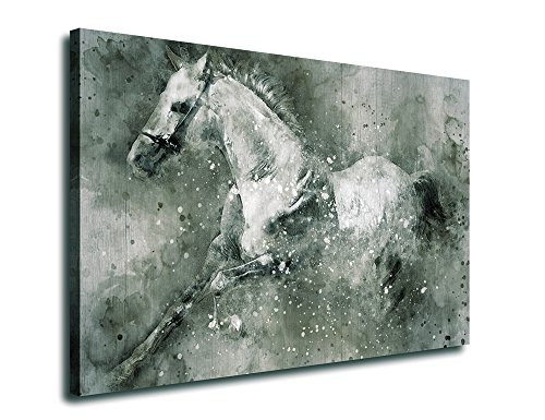 Running Horse Artwork Animal Picture  on Canvas