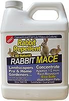 Nature's Mace 32oz. Concentrate Rabbit Repellent, Treats 1/2 Acre