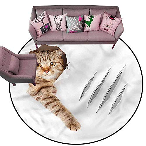 Large Floor Mats for Living Room Colorful Animal,Funny Cat in Wallpaper Hole Diameter 66