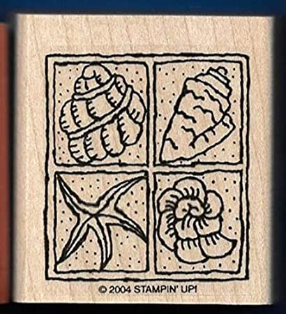 sea shell conch rubber stamp wood mounted scrapbooking rubber stamping