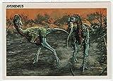 Avimimus - Dinosaurs: The Mesozoic Era (Trading Card) # 15 - Redstone Marketing 1993 Mint