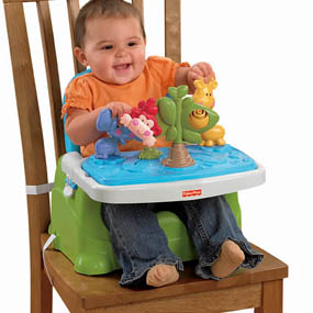 Amazon Com Fisher Price Discover N Grow Busy Baby Booster Chair Booster Seats Baby