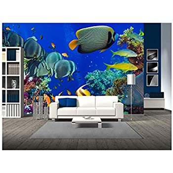 Tropical fish coral reef underwater style 4 scene porthole wall sticker 019