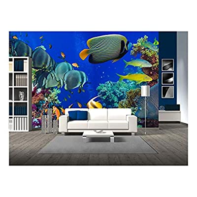 Wonderful Creative Design, Colorful Underwater Offshore Rocky Reef with Coral and sponges and Small Tropical Fish Swimming by in a Blue Ocean, Professional Creation