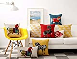 """Soopat Decorativepillows Covers 18""""x18"""" Two Sides"""