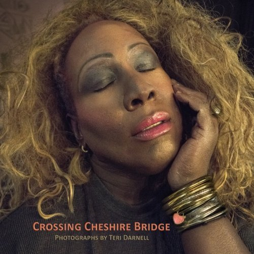 Crossing Cheshire Bridge: Photographs by Teri Darnell by Teri Darnell (2016-06-19)