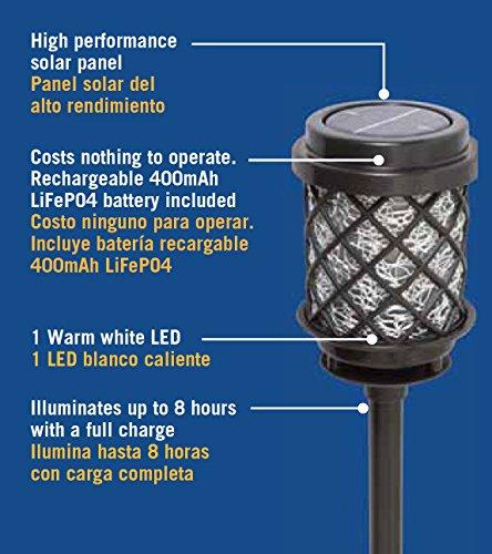 Malibu 6 Pack Calypso Collection Solar Pathway Lights