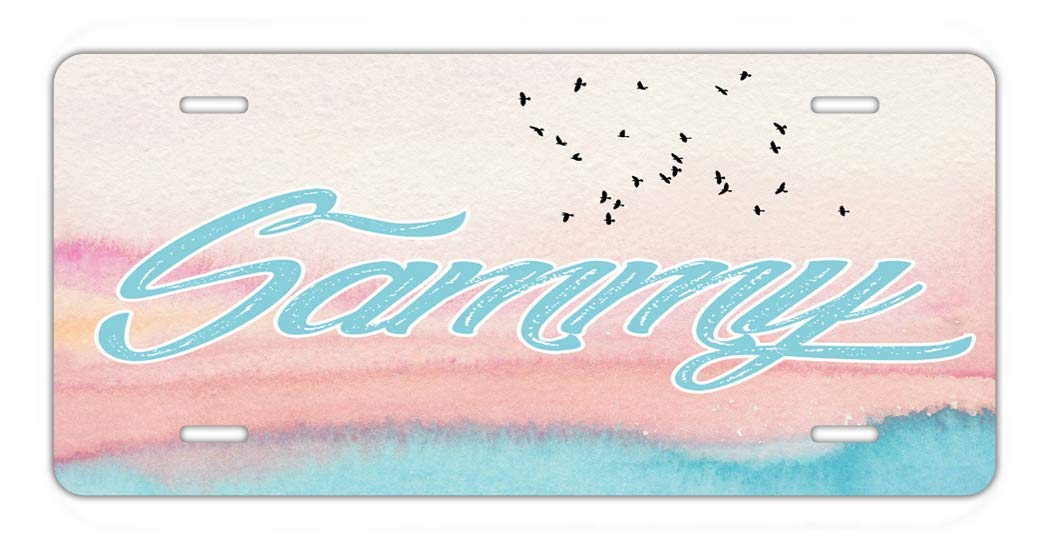 BRGIftShip Personalized Custom Name Beautiful Beach Colors Watercolor Painted Flying Birds Car Vehicle 6x12 License Plate Auto Tag