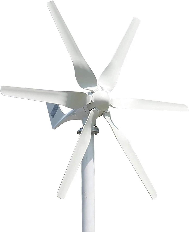 Turbina eólica 3000W 12V / 24V / 48V Aerogeneradores + Controlador de fibra de nylon 6 láminas del generador horizontal del viento molino de viento generador de energía Turbinas de carga (Color: 12v)