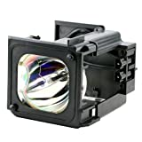 Bp96-01795Aprojector / Tv Lamp With