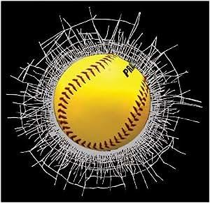 Wild Clings Shatter Softball 3-D Decal Gift