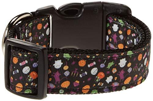 Mirage Pet Products Halloween Confetti Nylon Dog Collar, Medium ()