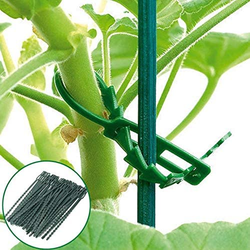 Frmarche - 50 Lazos de encuadernación Reutilizables de jardín para ...