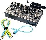 Pittsburgh Modular Synthesizers Lifeforms SV-1 Blackbox