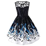 YJYdada Womens Ladies Printing Lace Sleeveless Evening Party Dress Vintage Dress (S)