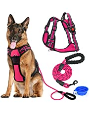 LIZCOM Dog Harness Set,No Pull Walking Pet Harness with Metal Rings and Handle with Strong Dog Leash Reflective Rope(5 Foot) and Collapsible Dog Bowl for Small Medium Large Dogs