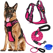 LIZCOM Dog Harness Set,No Pull Walking Pet Harness with Metal Rings and Handle with Strong Dog Leash Reflectiv