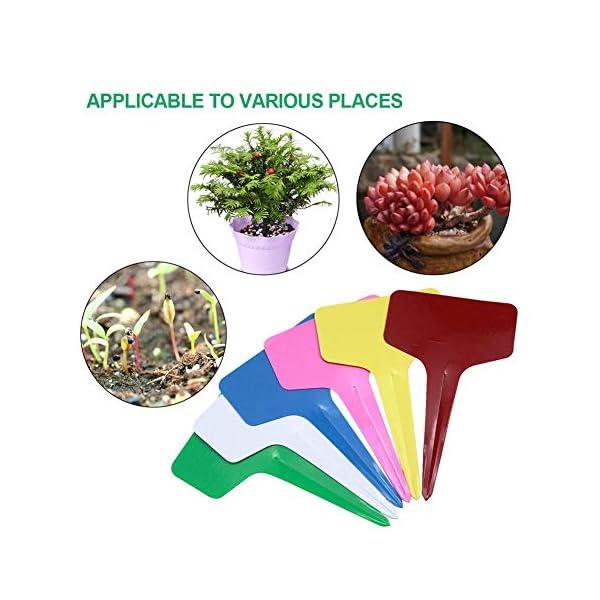 WFWUK Etichette vegetali per Fiori Etichette vegetali Colorate Etichette per Piante in Vaso Tag Giardino Etichette per… 6 spesavip