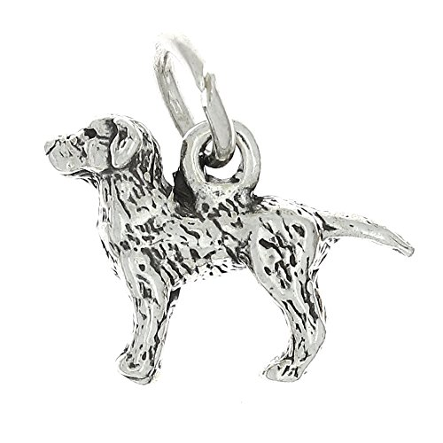 Lgu Sterling Silver Oxidized Labrador Retriever Three Dimensional Dog Charm