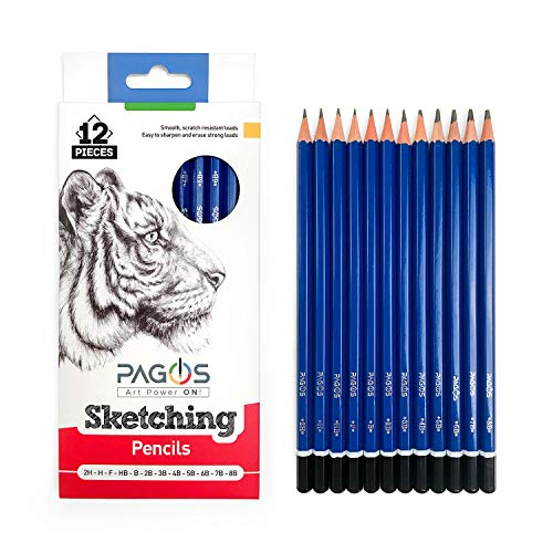 12 Sketching Pencils - Complete Professional Graphite Pencil Set for Sketch Drawing - 8B to 2H Art Travel Set for Adults and Kids - Shading Pencils, Drawing and Art Supplies, Sketching Set (12)