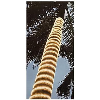 Amazon led rope light 210 led bulbs warm white home kitchen dual color led rope light 210 led bulbs aloadofball Gallery