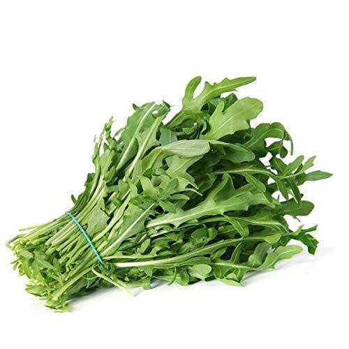 (Go Garden 200 Pcs Arugula(Eruca Sativa) Salad Rocket Green Salad Leaves Vegetables Seeds)