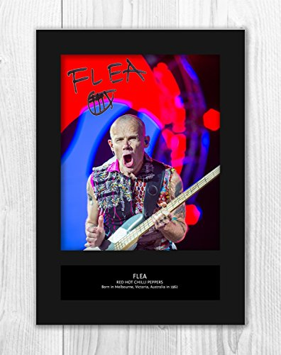 Engravia Digital Red Hot Chili Peppers - Flea 3 MT - Signed Autograph Reproduction Photo A4 Print (Card -