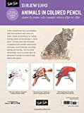 Drawing: Animals in Colored Pencil: Learn to draw