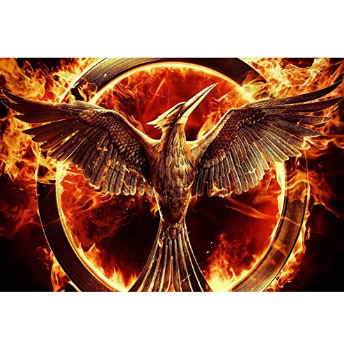 Full Square Drill 5D DIY The Hunger Games
