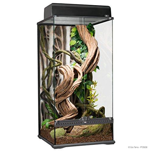 Exo Terra Natural Glass Terrarium, Small X-Tall