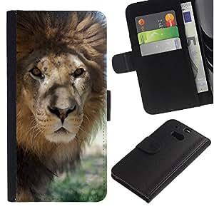 iKiki Tech / Cartera Funda Carcasa - Lion Beige Nature Savannah Animal King - HTC One M8