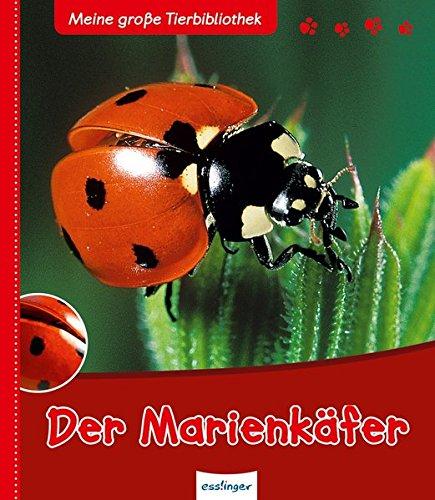 Der Marienkäfer (Meine große Tierbibliothek) Gebundenes Buch – 15. März 2009 Valérie Tracqui 3480224636 JUVENILE NONFICTION / General empfohlenes Alter: ab 3 Jahre
