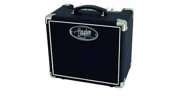 Hayden lmofo2 C118 Lil Mofo 2 W Combo Amplificador de ...