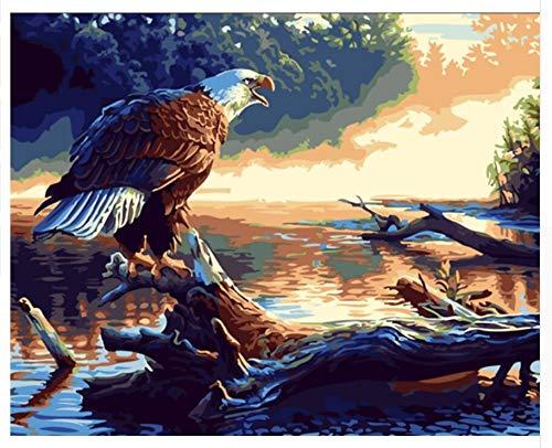 Superlucky Adler DIY Malen Nach Zahlen Zeichnung Malen Nach Zahlen modernes Abstraktes ölgemälde Auf Leinwand Home Wandbild Gerahmt 40x50 cm B07K8QN3B6   Fein Verarbeitet